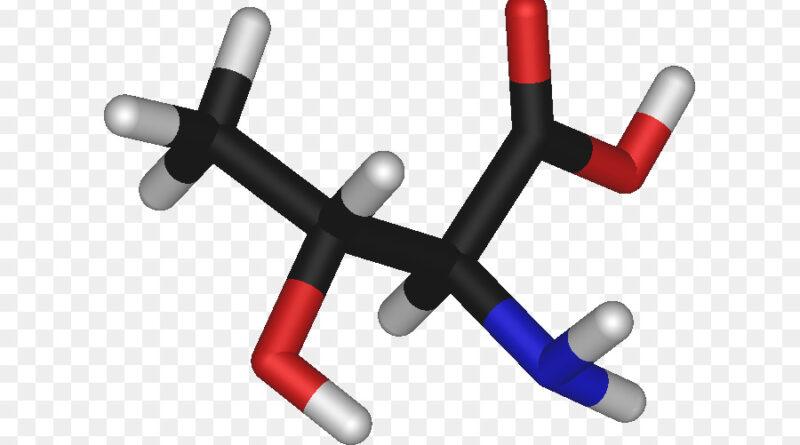 В чем содержится треонин